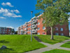 Bachelor apartment for rent in St. John's