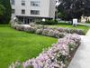 MOUNTAIN AVE N-JONES ST (STONEY CREEK apartment)