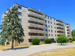1 Bedroom apartment for rent in BRANTFORD